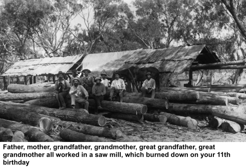 A_sawmill_in_the_interior_from_The_Powerhouse_Museum_Collection